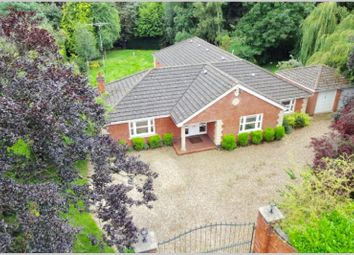 7 bed bungalow to rent in Elms Road, Stoneygate, Leicester LE2