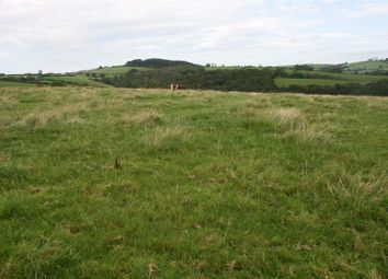 Thumbnail Land for sale in Llangynin, St. Clears, Carmarthen