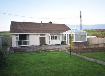 Thumbnail 3 bed detached bungalow for sale in Calvesford Road, Torrington