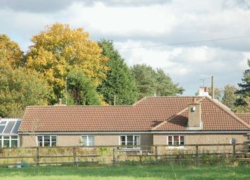 Thumbnail 3 bed detached bungalow for sale in Kirkholme, Kirkley, Northumberland