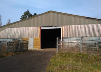Thumbnail Warehouse to let in Unit F1, Woolmer Farm, Bramshott, Liphook, Hampshire