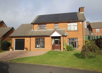 Thumbnail 3 bedroom detached house to rent in Glebe Manor, Newtownabbey