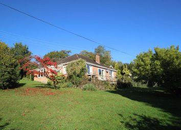The Thorn, Wrigglebrook, Hereford HR2, herefordshire property