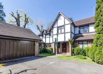 Thumbnail 5 bed detached house to rent in Nightingale Close, Pinner