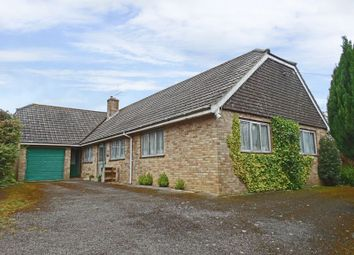 Thumbnail 3 bed detached bungalow for sale in Duck Street, Tisbury, Salisbury