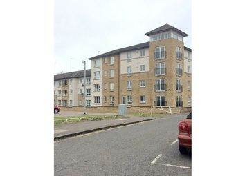 Thumbnail 2 bed flat to rent in Henderson Court, Motherwell ML1,