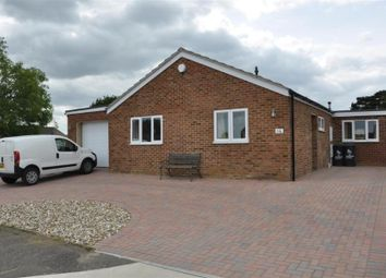 Thumbnail 4 bedroom bungalow to rent in Radnor Close, Herne Bay