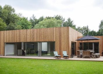 Thumbnail 4 bed detached house to rent in Prey Heath, Woking, Surrey