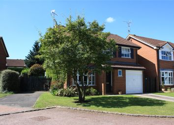 Thumbnail 4 bed detached house to rent in Blackley Close, Earley, Reading, Berkshire