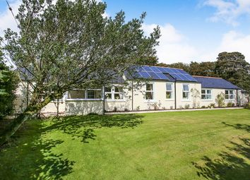 Thumbnail 4 bed bungalow for sale in Waterbeck, Lockerbie