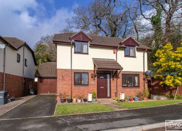 Thumbnail 4 bed detached house for sale in Dolphin Crescent, Shorton, Paignton