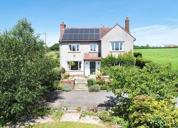 Thumbnail 4 bed detached house for sale in Birchill Lane, Feltham, Frome
