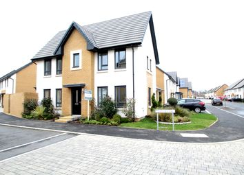 Thumbnail 3 bed detached house to rent in Spindle Crescent, Plympton, Plymouth