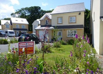 Thumbnail 4 bed detached house for sale in Llysderwen, New Quay