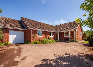 Thumbnail 3 bed bungalow for sale in Walford, Ross-On-Wye