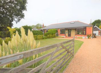 Thumbnail 4 bed semi-detached bungalow to rent in Finchdean Road, Rowlands Castle