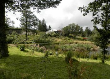 Thumbnail 4 bed detached bungalow for sale in Bronant, Aberystwyth, Ceredigion