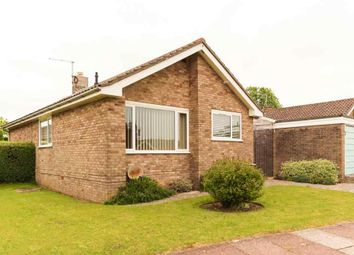 Thumbnail 3 bed detached bungalow to rent in Hunts Mead, Sherborne