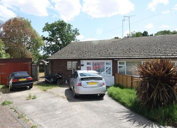Thumbnail 4 bed bungalow for sale in Great Totham, Maldon, Essex