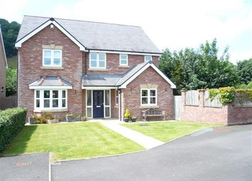 Thumbnail 4 bed detached house for sale in Nanty Felin, Abermule, Powys, Powys