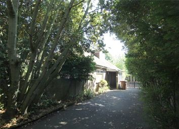 Thumbnail 4 bed detached bungalow for sale in Park Avenue, Gillingham, Kent.