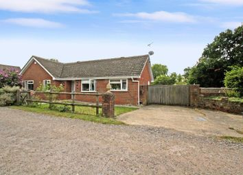 Thumbnail 3 bed detached bungalow for sale in The Grove, Liphook