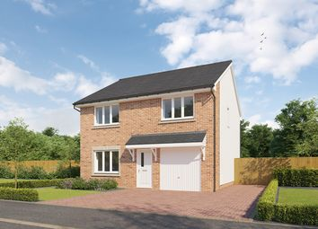 """Thumbnail 4 bedroom detached house for sale in """"Denewood - II"""" at Meikle Earnock Road, Hamilton"""