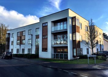 Thumbnail 2 bedroom flat to rent in Hollies Court, Basingstoke