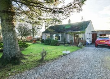Thumbnail 3 bed detached bungalow for sale in Pale Close, Blindbothel, Cockermouth, Cumbria
