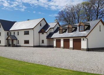Thumbnail 11 bed property for sale in Capel Hendre, Ammanford