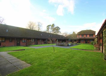 Thumbnail 2 bed bungalow to rent in London Road, East Grinstead