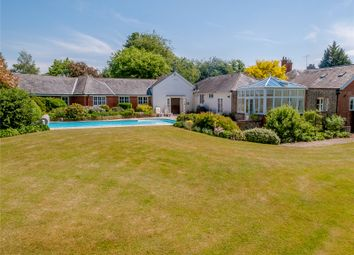 Thumbnail 4 bed bungalow for sale in Church Lane, Holybourne, Hampshire