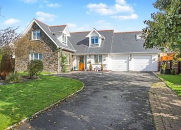 Thumbnail 3 bed detached house for sale in Egypt Meadow, Narberth