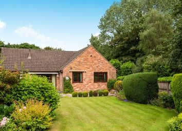 Thumbnail 3 bed bungalow for sale in Salt Box Road, Guildford, Surrey
