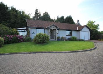 Thumbnail 2 bed detached bungalow for sale in Ryecroft View, Wooler, Northumberland