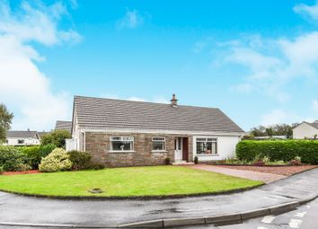 Thumbnail 5 bedroom detached bungalow for sale in Belvedere View, Galston
