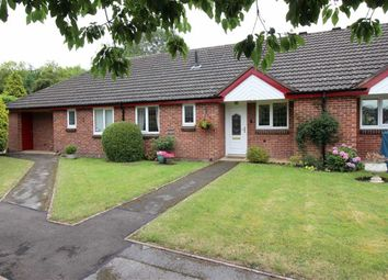 Thumbnail 2 bed terraced bungalow for sale in Wessington Mews, Allestree, Derby