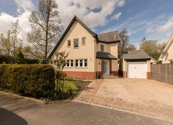 Thumbnail 4 bed detached house to rent in Auchterarder