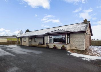 Thumbnail 3 bed bungalow for sale in Forfar Road, Maryton, Kirriemuir