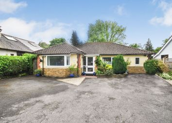 Thumbnail 4 bed bungalow for sale in Lower Road, Little Hallingbury