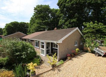 Thumbnail 2 bed semi-detached bungalow for sale in Coedwaungar, Sennybridge, Brecon