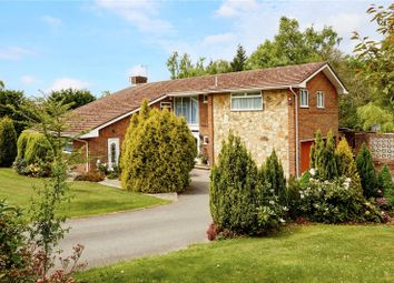 Thumbnail 6 bed detached house for sale in Forest Place, Waldron, Heathfield, East Sussex