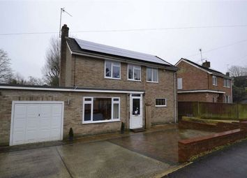 Thumbnail 3 bed link-detached house for sale in Cheriton Close, Newbury, Berkshire