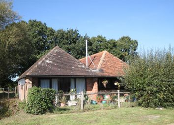 Thumbnail 3 bed detached bungalow to rent in Whitebread Lane, Beckley, Rye