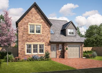 "Thumbnail 4 bed detached house for sale in ""Warwick"" at Station Road, Longhoughton, Alnwick"
