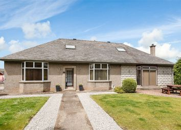 Thumbnail 5 bed detached bungalow for sale in Millgate, Friockheim, Arbroath, Angus