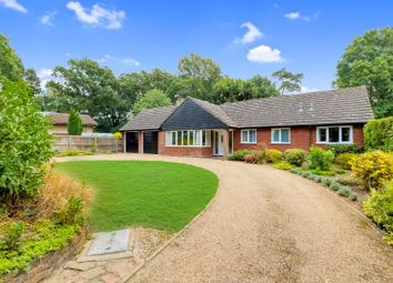 Thumbnail 4 bed bungalow for sale in Stanway Green, Stanway, Colchester
