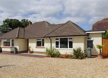 Thumbnail 3 bed bungalow for sale in Dilly Lane, Barton On Sea, New Milton