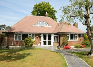 Thumbnail 3 bed detached bungalow for sale in Pinewoods, Bexhill-On-Sea