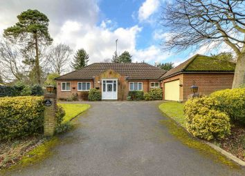 Thumbnail 3 bed bungalow for sale in Snows Ride, Windlesham